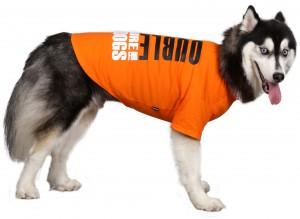 BD399-DOG