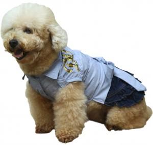 C192-dog