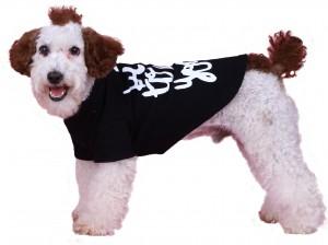 T286-DOG