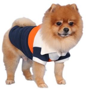 W003-DOG3